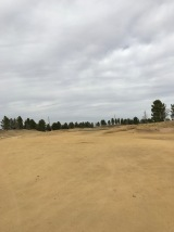 The approach to the par 5 second from 150 yards out