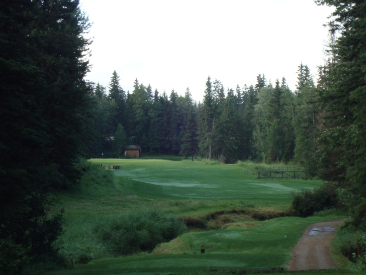 The fourth is one of the toughest tee shots in Alberta